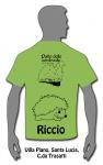 verde-riccio