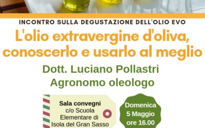 L'olio extravergine d'oliva, conoscerlo per usarlo meglio